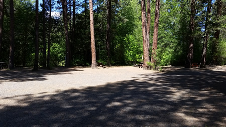 Elk Ridge Campground Tent Sites